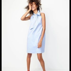 J. Crew Tie Neck Bow Dress In Oxford Cotton D53